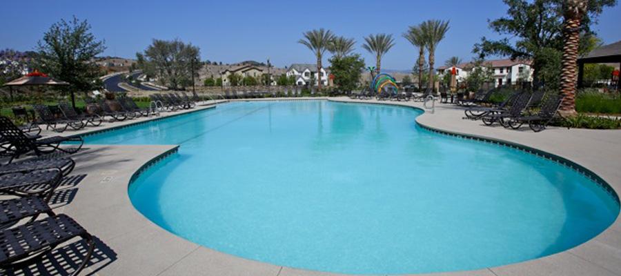 Swim Camps